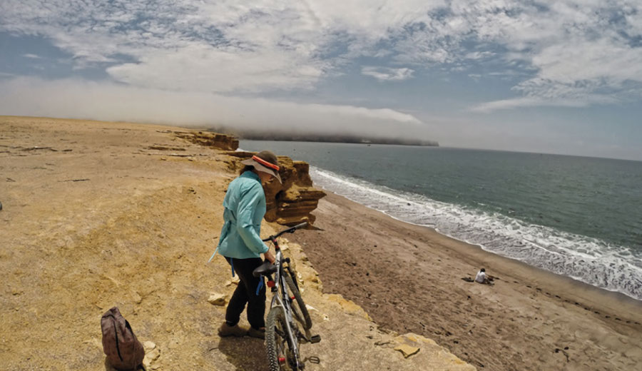 Bicicleta en Paracas